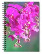 Purple Orchid Branch Spiral Notebook
