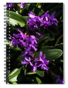 Purple Orchid Plant Spiral Notebook