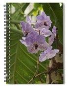 Purple Orchids 2 Spiral Notebook