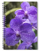 Purple Orchids Spiral Notebook