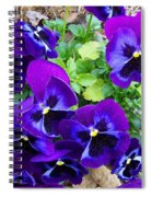 Purple Pansies Spiral Notebook