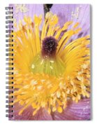 Purple Pasque Flower With Pollen Spiral Notebook