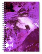 Purple Passion Abstract Spiral Notebook