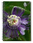 Purple Passion Flower Spiral Notebook