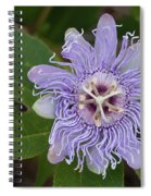 Purple Passionflower #2 Spiral Notebook