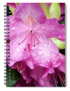 Purple Pink Horizontal Spiral Notebook