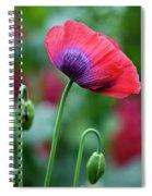 Purple Poppy Flower Spiral Notebook