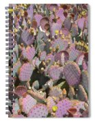 Purple Prickly Pear 3 Spiral Notebook