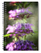 Purple Promises Spiral Notebook