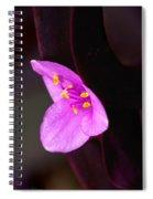 Purple Queen Spiral Notebook