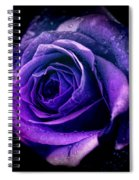 Purple Role Spiral Notebook