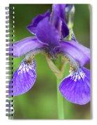 Purple Siberian Iris Spiral Notebook