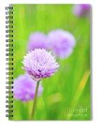 Purple Spring 11 Spiral Notebook