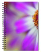 Purple Spring 12 Spiral Notebook