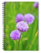Purple Spring 14 Spiral Notebook