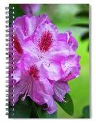 Purple Spring 15 Spiral Notebook