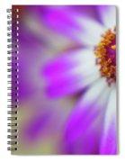 Purple Spring 7 Spiral Notebook