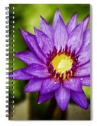 Purple Sunrise Spiral Notebook