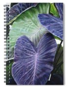 Purple Taro Spiral Notebook