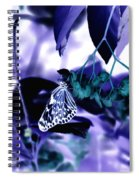 Purple Teal And A White Butterfly Spiral Notebook