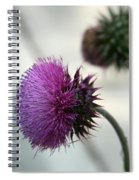 Purple Thistle Spiral Notebook