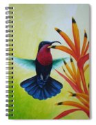 Purple-throated Carib And Bird Of Paradise Spiral Notebook
