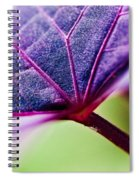 Purple Veins Spiral Notebook