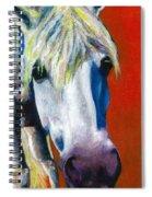 Purple Velvet Spiral Notebook