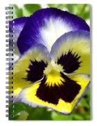 Purple White And Yellow Pansy Spiral Notebook