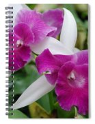 Purple White Orchids Spiral Notebook