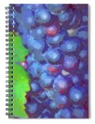 Purple Wine Grapes 2017 Spiral Notebook