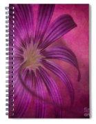 Put In A Box Spiral Notebook