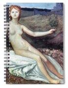 Puvis De Chav: Lesperance Spiral Notebook