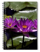 Quad Four Two Spiral Notebook