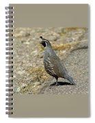 Quail Spiral Notebook