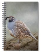 Quail On The Rocks Spiral Notebook