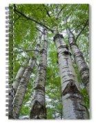Quaking Aspen Spiral Notebook
