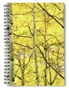 Quaking Aspen Fall Spiral Notebook