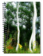 Quaking Spiral Notebook