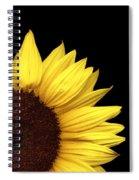 Quarter Sun Spiral Notebook