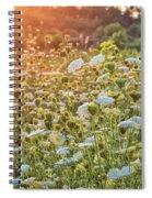 Queen Anne At Sunset Spiral Notebook