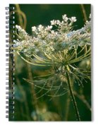 Queen Anne's Lace In Green Horizontal Spiral Notebook