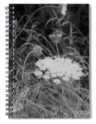 Queen Annes Lace Spiral Notebook