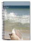 Queen Conch On The Beach Spiral Notebook