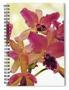 Queen Of Orchids Spiral Notebook