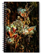 Queen Of The Ditches II Spiral Notebook