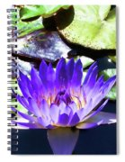 Queen On The Lake Spiral Notebook