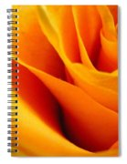 Queen Rose Spiral Notebook