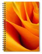 Queen Rose Spiral Notebook