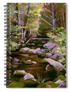 Quiet Brook Spiral Notebook